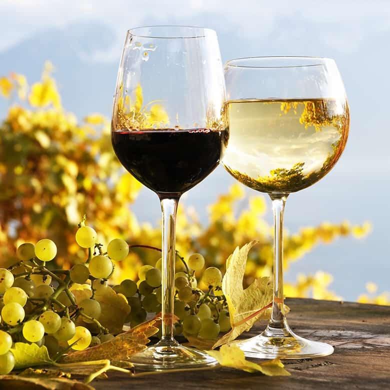 Weinkellerei Meraner Weinauswahl