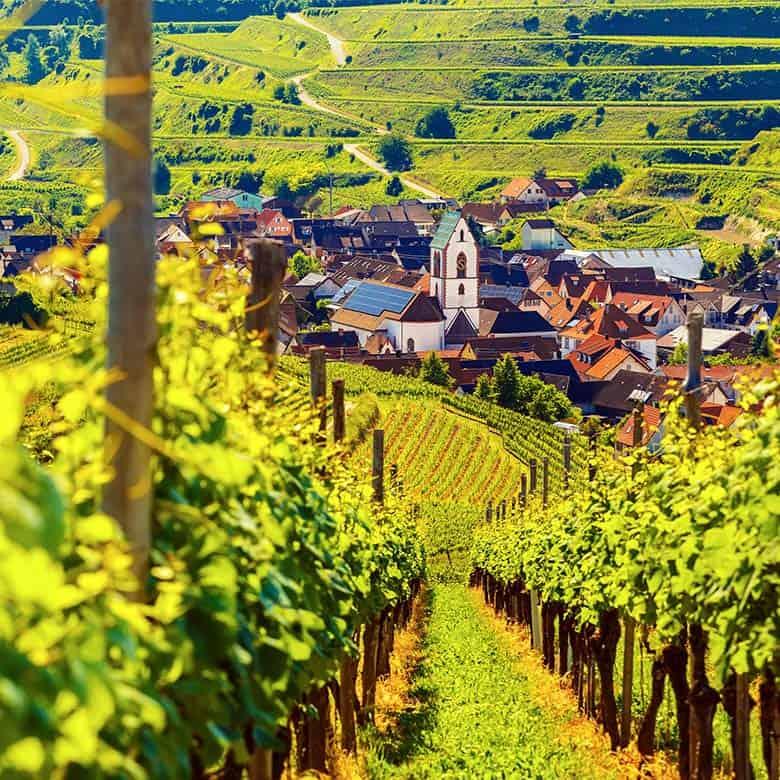 Weinkellerei Meraner Deutschland
