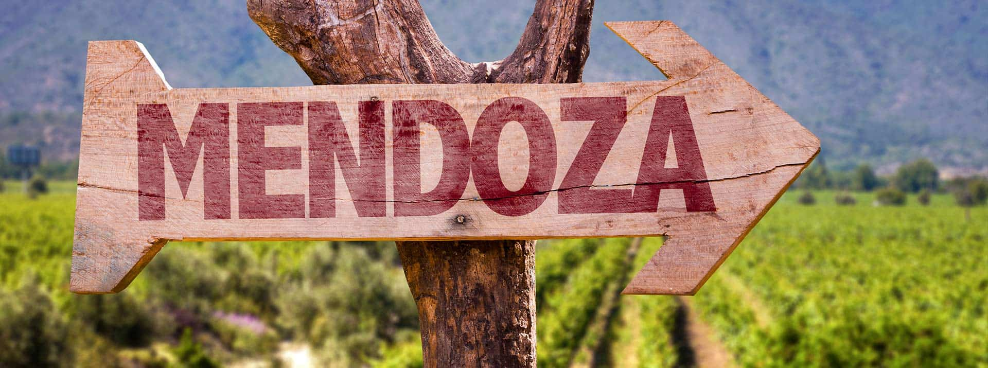 Weinkellerei Meraner Perdriel Mendoza