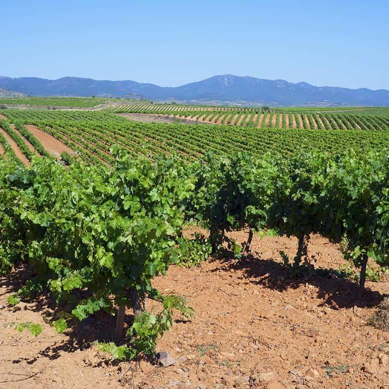 Weinkellerei Meraner Spanien