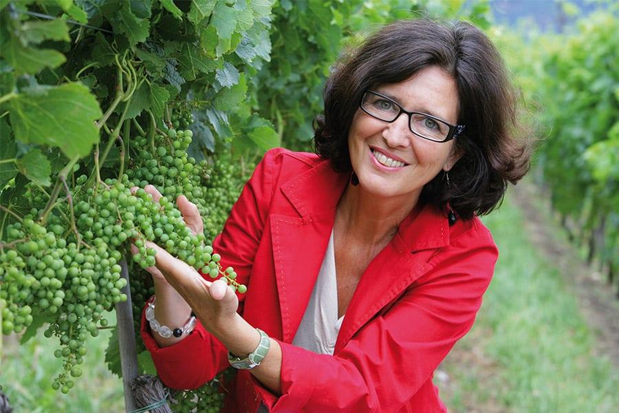 Weinkelllerei Meraner Weingut Elena Walch