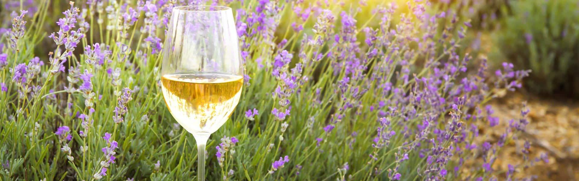 Weinkellerei Meraner Frankreich